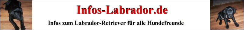 Labrador Infos auf Infos-Labrador.de